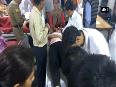24 injured as bus overturns in Shimla