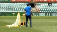 cricket australia video
