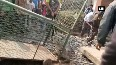 Crocodile hiding in drainage rescued from Dabhou Village