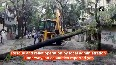 Trees uprooted, homes damaged after high-velocity winds hit Siliguri