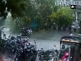 Caught on cam: People cheat death after tree falls on road