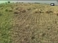 Unable to pay back loan, farmer commits suicide in Banda