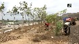 Ahmedabad Municipal Corporation to convert dumping ground into green zone
