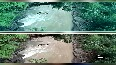 Watch: People risking their lives to cross swollen stream in Barwani