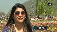 WATCH: The Beauty of Tulip Garden in Srinagar!