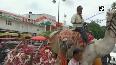 Protest in Maharashtras Aurangabad against rising fuel prices