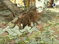 Pre-monsoon showers disrupt life in Hyderabad