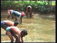 Fish farmers in southern India earn huge profits