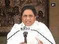 PM Modi seems nervous after 3rd phase as BJP won t form govt. in UP Mayawati