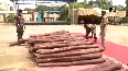 Chittoor Police seize 115 sandalwood logs worth Rs 1.5 crore, 13 arrested