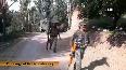 Encounter underway between terrorists security forces in J&Ks Shopian