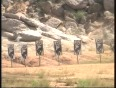 Cops get special training to tackle Maoists
