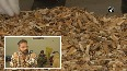 Punjab man recycles cigarette butts into toys, cushions