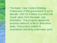 Crown capital management jakarta indonesia - a solution for asian carp infestation