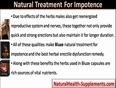 Herbal Erectile Dysfunction Remedy, Bluze Natural Treatment For Impotence