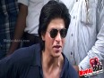 SRK Crowns AbRam With His IPL Win