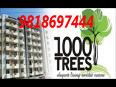 9818697444 Great Value 1000 Trees Sector 6 Sohna Gurgaon