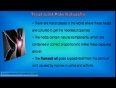 How Should You Treat Joint Pain Naturally