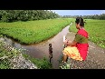 Velli Nilave Video Song