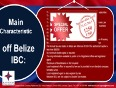 Belize offshore company