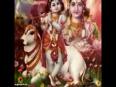 LOVE VASHIKARAN AGHORI TANTRIK BABA JI 91-9660339608