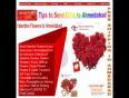 Valentine Gifts to Ahmedabad, Valentine Flowers to Ahmedabad, Valentine Cakes Ahmedabad