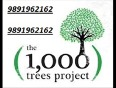 Best deal &amp 9891962162&amp  great value new project launch sector-6 sohna gurgaon road 1000 trees