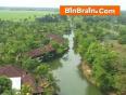 River_in_Kottayam