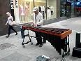 Amazing Xylophone player