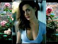 Beautiful Anne Hathaway  - Nominate oscar