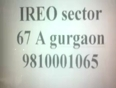 9810001065, ireo sector 67 A gurgaon, ireo new project sector 67 A gurgaon, ireo sector 67 A gurgaon