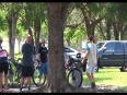 Lion chasing park visitors video