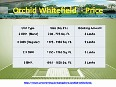 Orchid_whitefield_Bangalore