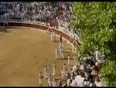 Bull jumps in crowd video