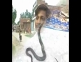Daring girl with snakes video