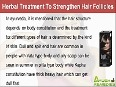 Herbal Treatment To Strengthen Hair Follicles Naturally