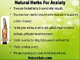 Essential Herbs For Anxiety That Help Naturally